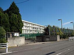 中学校碧南市立新川中学校まで710m