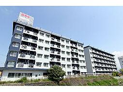 愛媛県松山市北土居3丁目の賃貸マンションの外観
