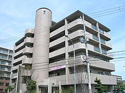 兵庫県伊丹市北伊丹8丁目の賃貸マンションの外観