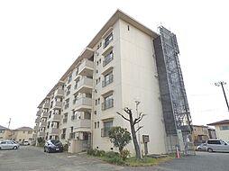 サニーハイツ加古川1号棟[304号室]の外観