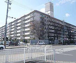 京都府向日市上植野町堂ノ前の賃貸マンションの外観