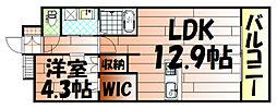 リオ・グランデ[203号室]の間取り