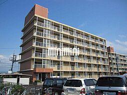 マルベリーハイアットI[6階]の外観