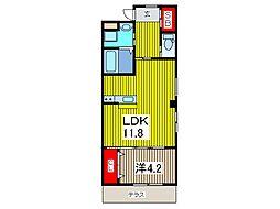 元郷JNS新築工事[2階]の間取り