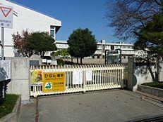 小学校水戸市立渡里小学校まで775m