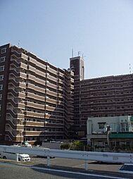 シティライフ空港南II[7階]の外観