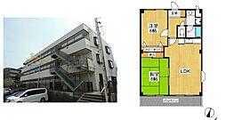 神奈川県横浜市泉区白百合1丁目の賃貸マンションの間取り