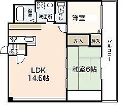 ネットビル6[6階]の間取り