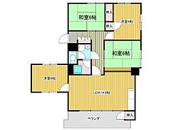 愛知県名古屋市千種区山添町2丁目の賃貸マンションの間取り