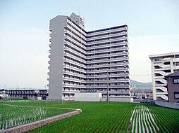 千代グランドマンションB[1階]の外観
