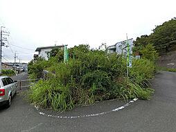 柏原市大字高井田