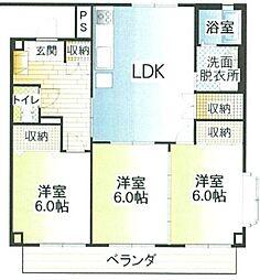 静岡県三島市萩の賃貸マンションの間取り