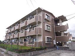 静岡県富士市今泉の賃貸マンションの外観