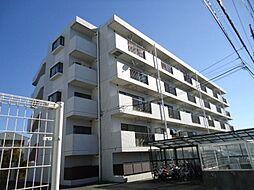 サンホワイト富士見が丘[503号室号室]の外観