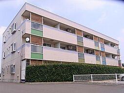 アネックスガーデン[0303号室]の外観
