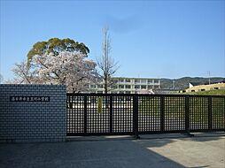 玉川小学校まで1100m、玉川小学校まで1100m(徒歩約14分)