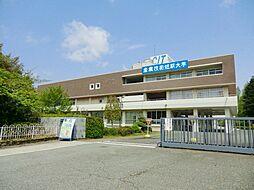 [一戸建] 兵庫県尼崎市常吉1丁目 の賃貸【/】の外観