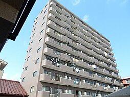 スタークレスト[11階]の外観