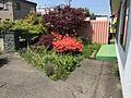 南面のお庭
