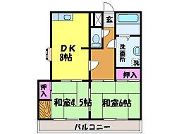 愛媛県松山市萱町5丁目の賃貸マンションの間取り