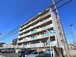 千葉県松戸市二十世紀が丘梨元町の賃貸マンションの外観