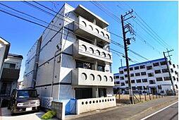 神奈川県藤沢市亀井野2丁目の賃貸マンションの外観