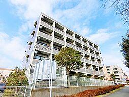 神奈川県藤沢市円行2丁目の賃貸マンションの外観