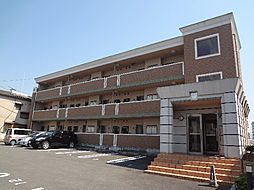 愛媛県松山市小坂5丁目の賃貸マンションの外観
