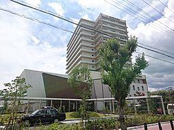 仮称D-room浜寺石津II[3階]の外観