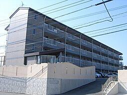 シーサイドアベニュー古賀[4階]の外観