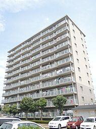 プロスペール谷塚 弐番館[8階]の外観