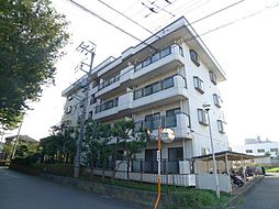 千葉県柏市南増尾7の賃貸マンションの外観