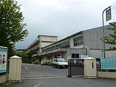 土浦市立土浦第二小学校(481m)