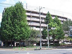 サン マグノリア[4階]の外観