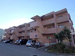 鹿児島県鹿児島市山田町の賃貸マンションの外観