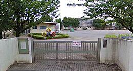 東柴又小学校 260m