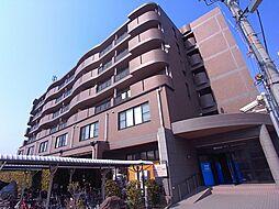 サンメゾンヒラソル[4階]の外観