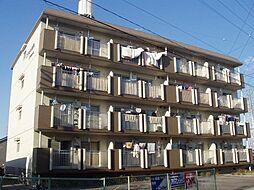 エクセル築地[3階]の外観