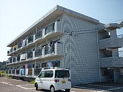 プラスハイツ須崎[305号室]の外観