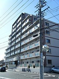 愛知県常滑市栄町7丁目の賃貸マンションの外観