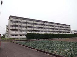 ビレッジハウス松山上野[1階]の外観