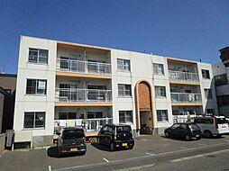 北海道札幌市東区北十七条東19丁目の賃貸マンションの外観