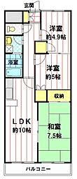 クリスタルハイツ墨坂[305号室]の間取り