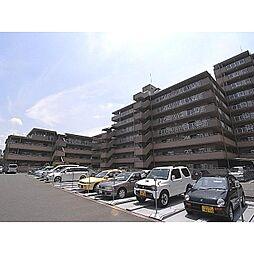 奈良県天理市平等坊町の賃貸マンションの外観