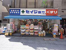 くすりセイジョー大岡山店(260m)