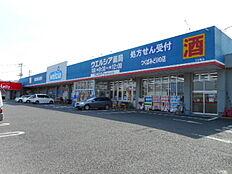 ウエルシアつくばみどりの店(350m)