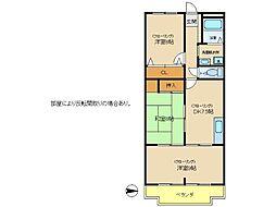 兵庫県明石市和坂1丁目の賃貸マンションの間取り