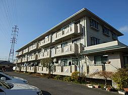 神奈川県川崎市幸区小倉2丁目の賃貸マンションの外観