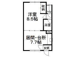桐井マンション[8号室]の間取り