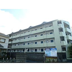 静岡県浜松市北区細江町中川の賃貸マンションの外観